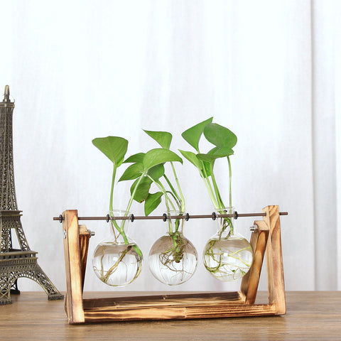 Image of Vintage Wooden Stand Plant Terrarium