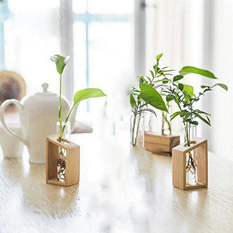 Image of Test Tube Hydroponic Plant Vase