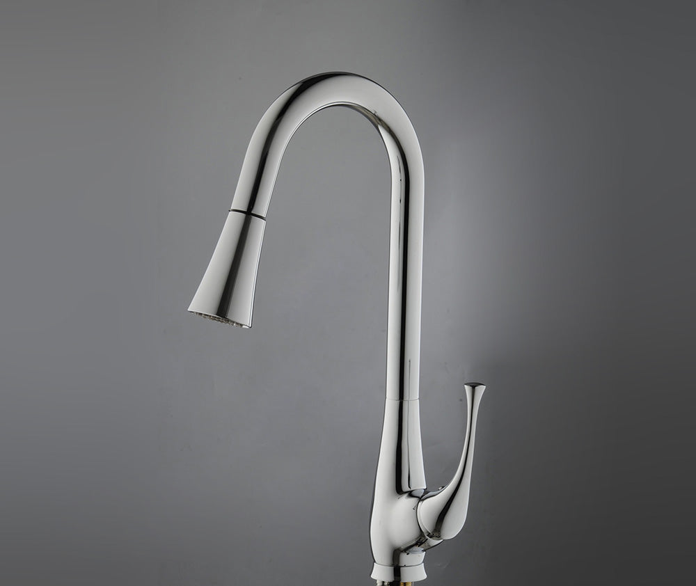 Ancona Single Handle Chrome Kitchen Faucet with Pull Out Sprayer - eCasaMart