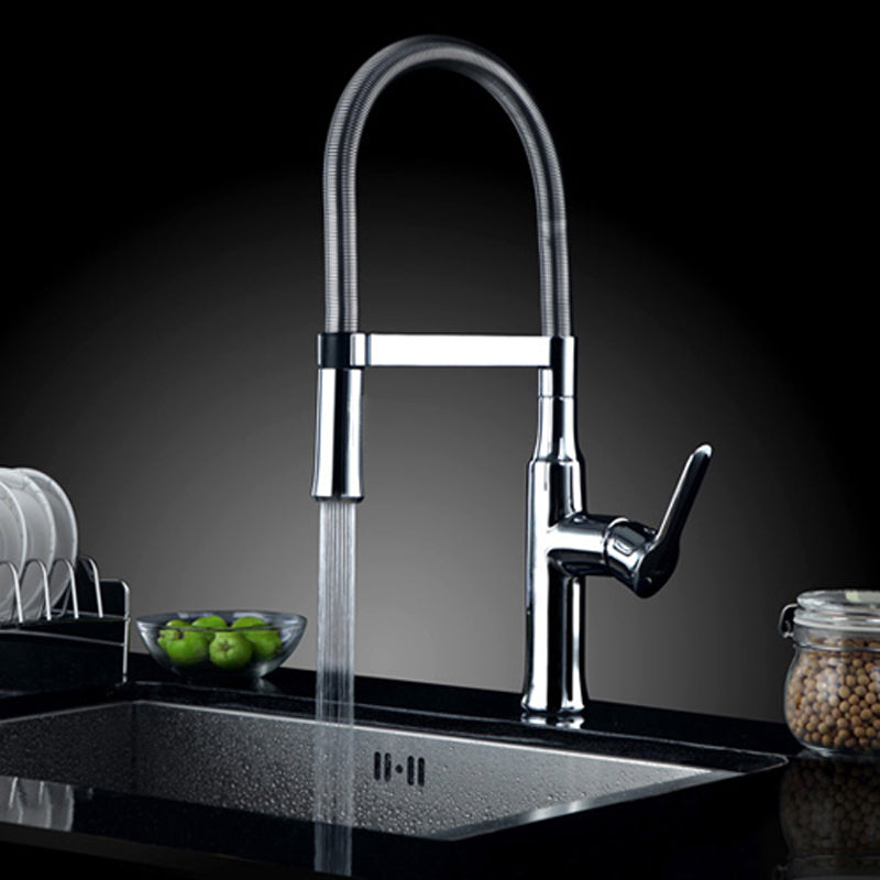 Lucca Single Handle Chrome Kitchen Sink Faucet with Pull Out Sprayer - eCasaMart