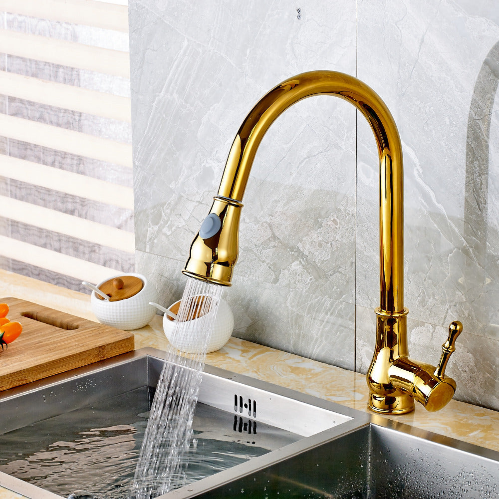 Mantua Gold Single Handle Kitchen Sink Faucet with Sprayer - eCasaMart