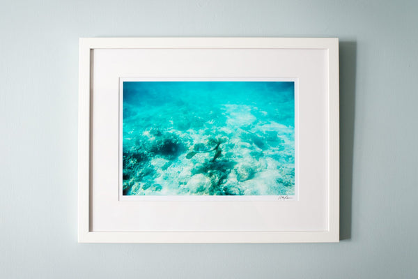 "Cate Brown Photo Seafaring Friends // Framed Fine Art 14x18"" // Open Edition Available Inventory Ocean Fine Art"