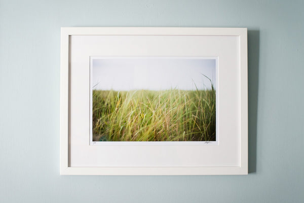 "Cate Brown Photo Beach Grass in the Wind // Framed Fine Art 14x18"" // Open Edition Available Inventory Ocean Fine Art"