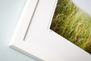 "Cate Brown Photo Beach Grass in the Wind // Framed Fine Art 14x18"" // Limited Edition 1 of 100 Available Inventory Ocean Fine Art"