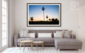Cate Brown Photo Baja Palms #1  //  Landscape Photography Made to Order Ocean Fine Art