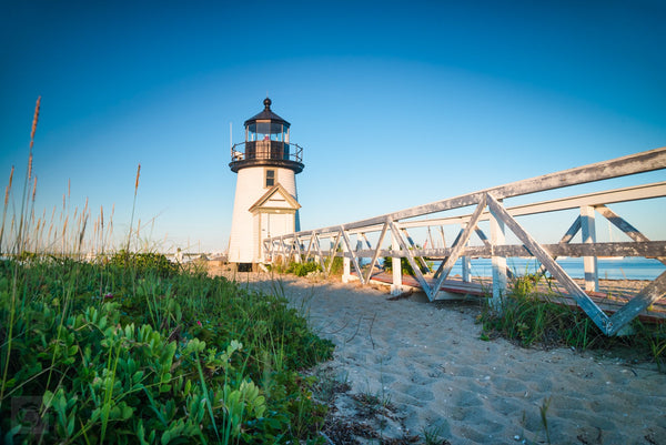 Brant Point Light from the Reeds  //  Landscape Photography