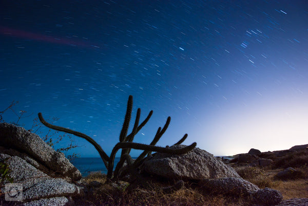 Baja at Night  //  Landscape Photography