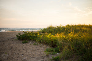 Cate Brown Photo East Matunuck at Golden Hour  //  Landscape Photography Made to Order Ocean Fine Art