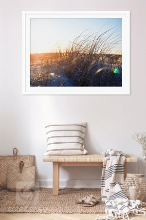 Cate Brown Photo Beach Grass in Gold #1  //  Film Photography Made to Order Ocean Fine Art