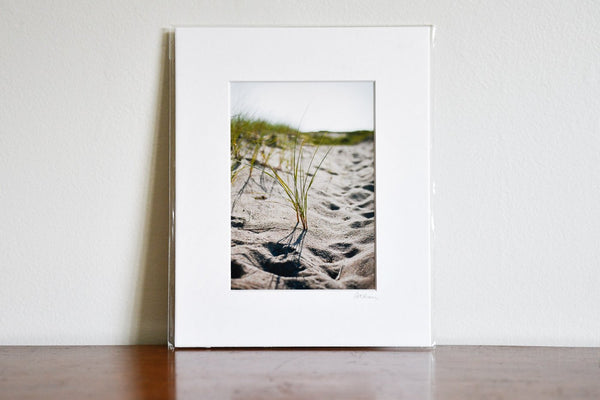 "Cate Brown Photo Beach Grass #2 // Matted Mini Print 8x10"" Available Inventory Ocean Fine Art"