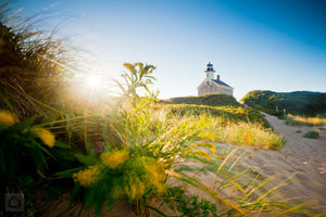 Cate Brown Photo North Light in Morning #2  //  Landscape Photography Made to Order Ocean Fine Art