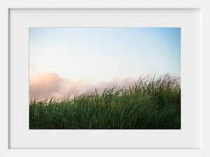 Scarborough Dunescape  //  Landscape Photography