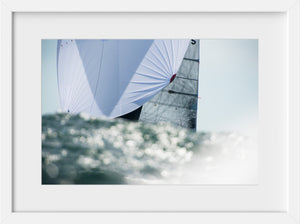 Silver Spinnaker  //  Nautical Photography