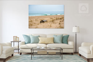 Cate Brown Photo Turquoise and Sand  //  Seascape Photography Made to Order Ocean Fine Art