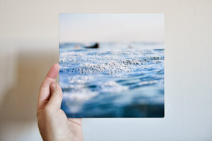 "Cate Brown Photo Dusky Details from Chris // Metal Print 7x7"" // Open Edition Available Inventory Ocean Fine Art"