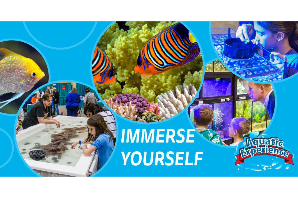 Aquatic Life Attending the Aquatic Experience Show in Chicago November 4-6, 2016