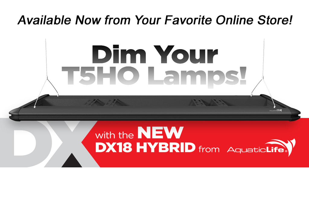 Introducing the Aquatic Life DX18 Hybrid T5HO Dimmable Fixtures in Three Sizes!