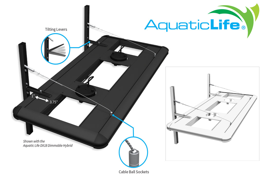 Aquatic Life is Your Light Fixture Hanger Headquarters!