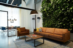 Living Greenwall