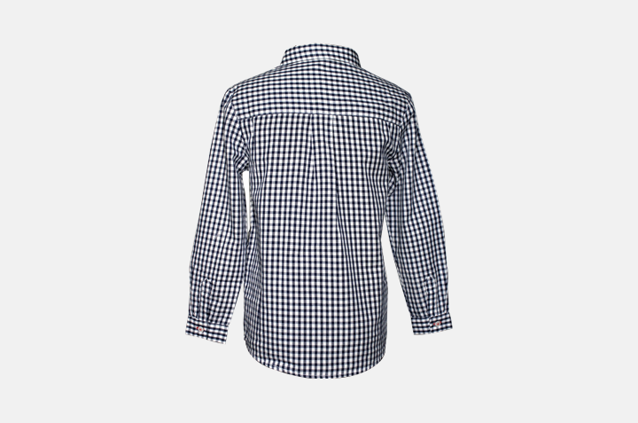 Indie Check Shirt Back
