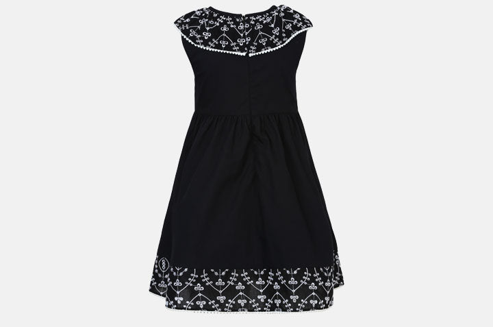 Dress with an Embroidered Collar