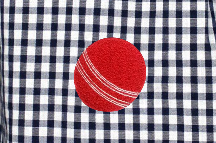 Dyed Cotton Check With Cricket Ball Embroidery