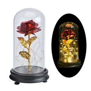 Enchanted Rose in Glass