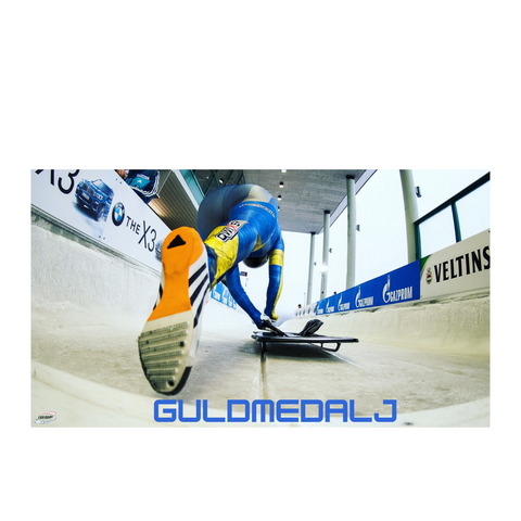 Guldmedalj/Gold Medal (Corporate Sponsor)