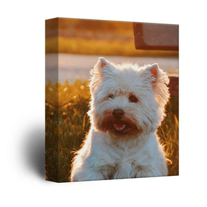Personalised Photo to Canvas Print Wall Art Custom Your Photo On Canvas Wall Art - Canvas Print Sale