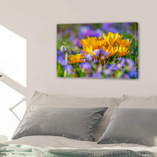 Load image into Gallery viewer, Crocus Flower Blossom Yellow Bloom Flora Canvas Prints Wall Art Home Decor - Canvas Print Sale