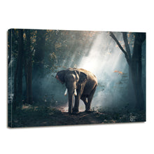Load image into Gallery viewer, Forest Elephant Animals Large Mammal Canvas Prints Home Decor Wall Art - Canvas Print Sale