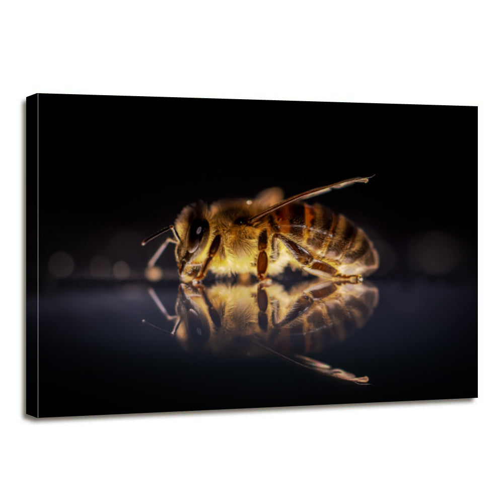 Honey Bee Canvas Prints Home Decor Wall Art - Canvas Print Sale