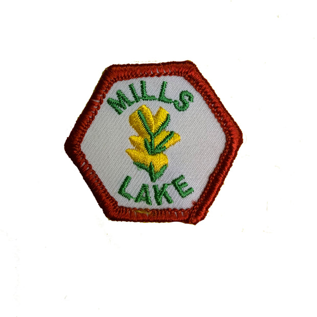 Mills Lake Trail Tag