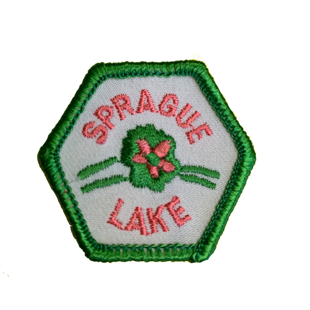Sprague Lake Trail Tag