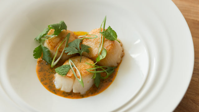 Pan Seared Scallops with Carrot Ginger Sauce