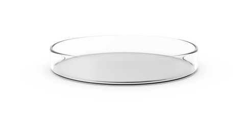 A glass pie dish