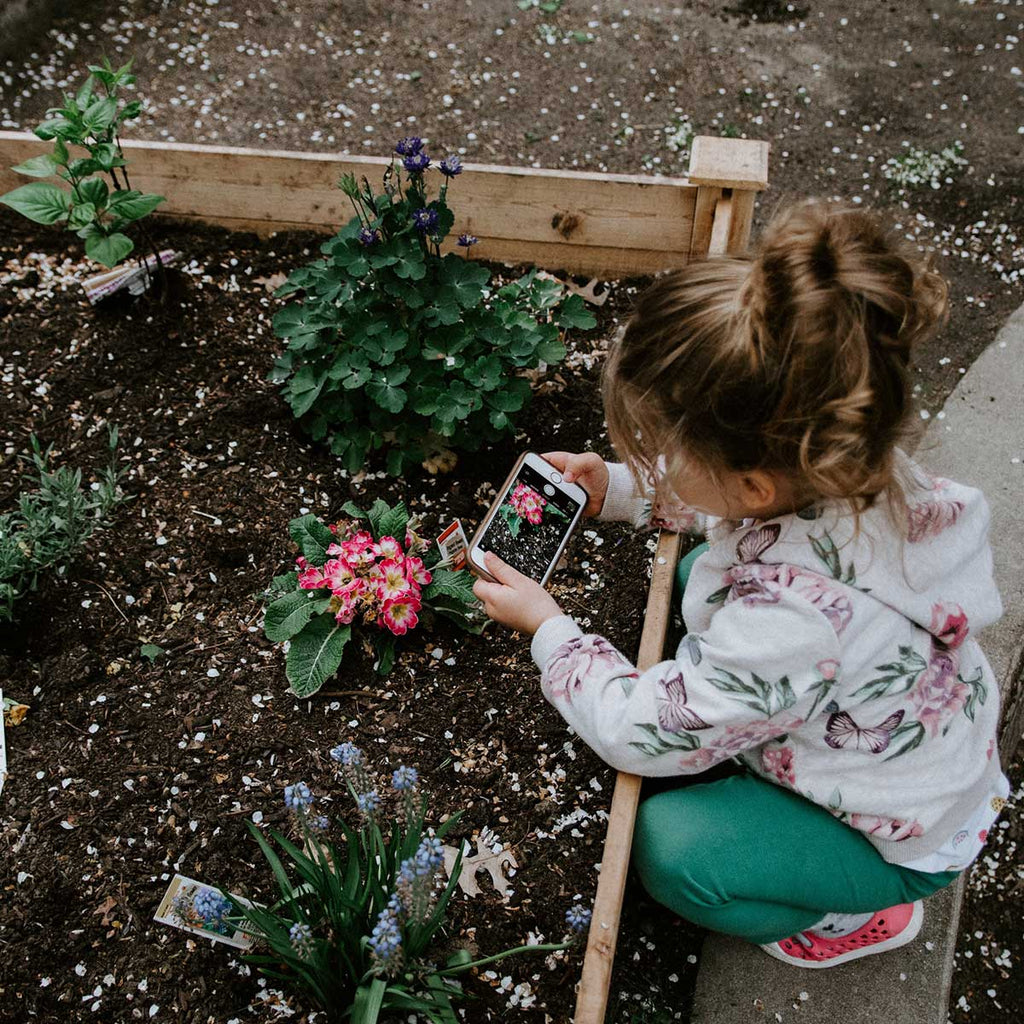 how to plant your garden for spring