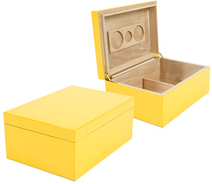 Mellow Yellow Humidor 100 Count