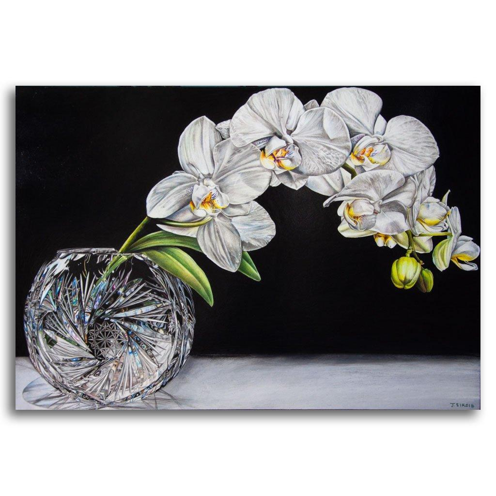 Crystal Vase and Orchid Coloured Pencil on Paper on Cradled Board by Jeannette Sirois