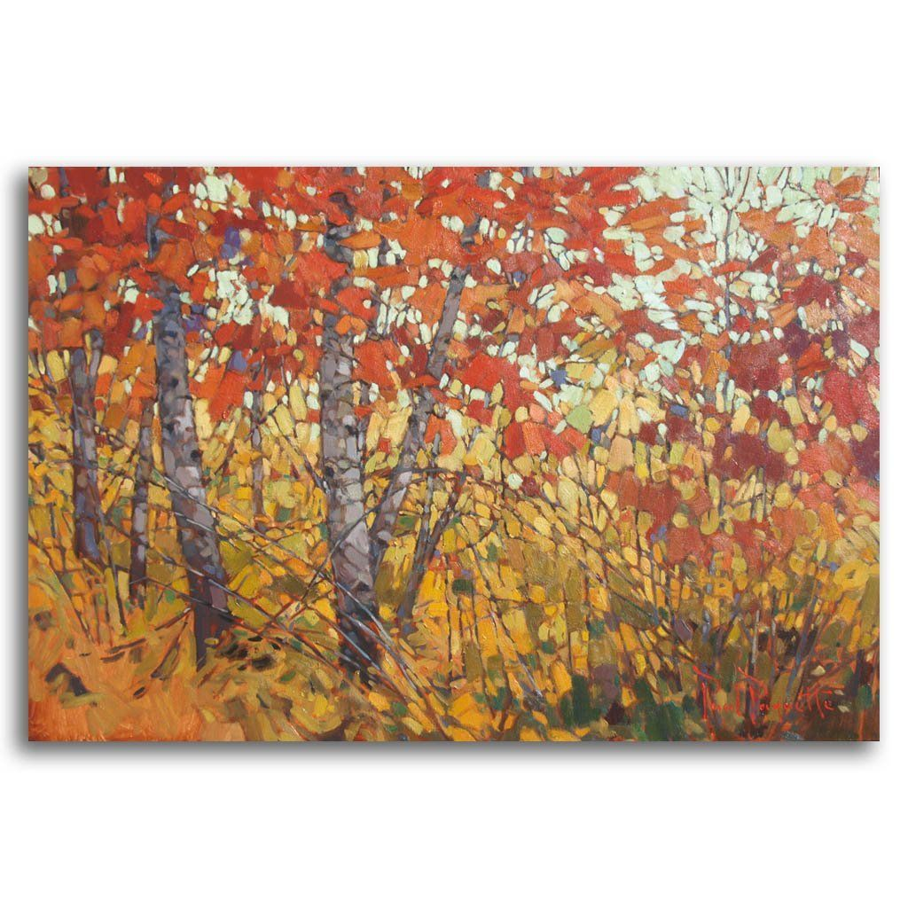 Tangled Forest Oil on Canvas by Paul Paquette