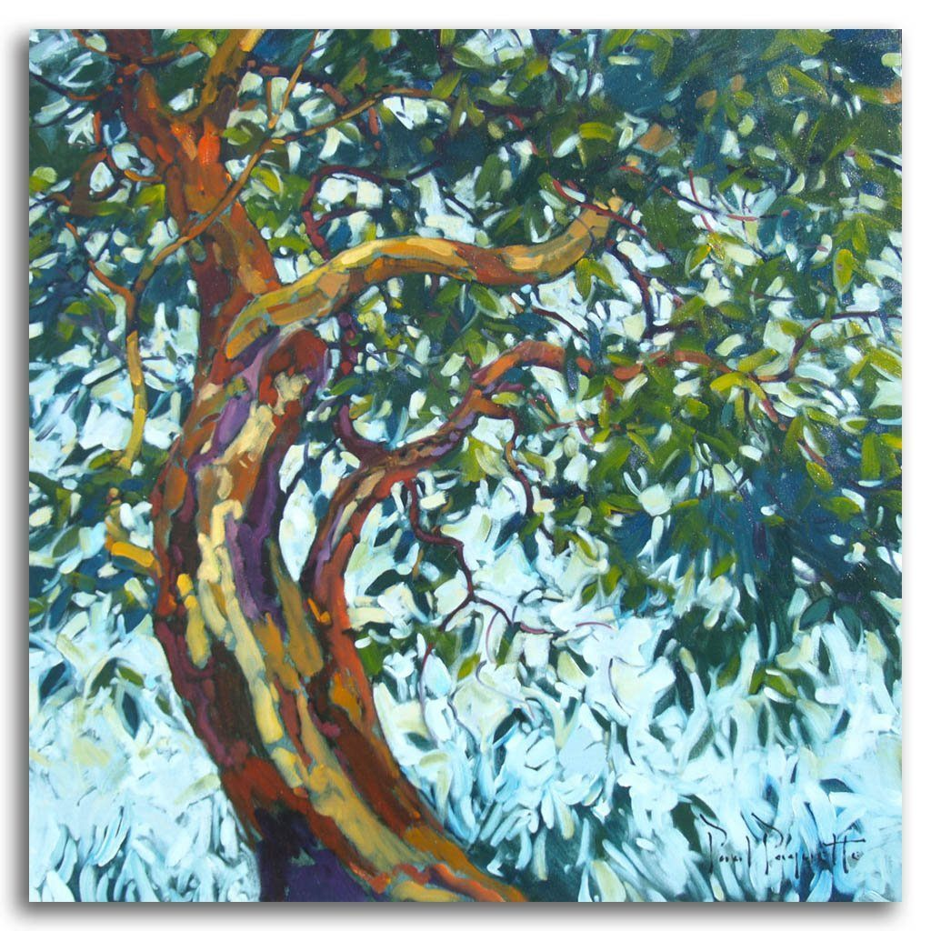 The Arbutus Tree Oil on Canvas by Paul Paquette