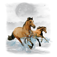 Load image into Gallery viewer, Horse Wilderness Heat Transfer