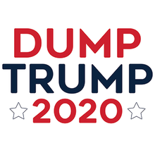 Load image into Gallery viewer, Dump Trump 2020 Heat Transfer