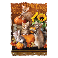 Load image into Gallery viewer, Autumn Kittens Heat Transfers