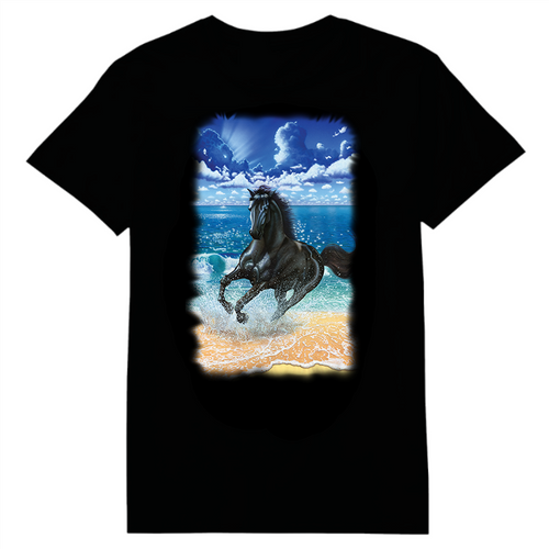 Black Stallion Heat Transfer