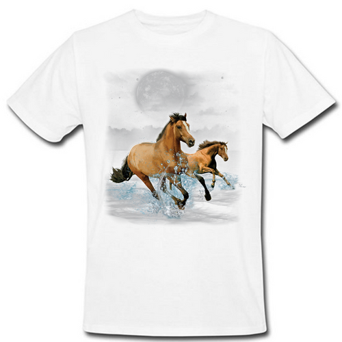 Horse Wilderness Heat Transfer