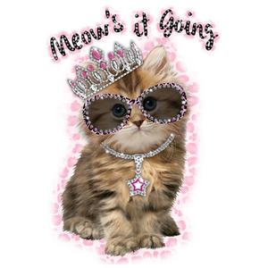 Meow's It Going Rhinestone Transfer