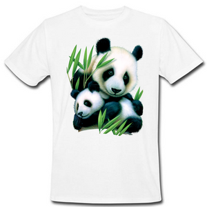 Panda And Cup Heat Transfer