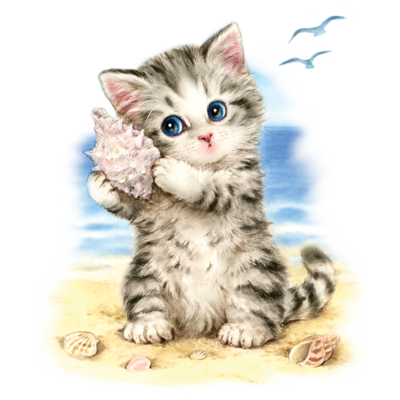 Seashell Kitten Heat Transfer