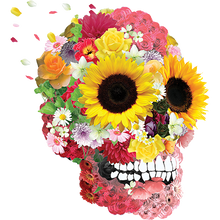 Load image into Gallery viewer, Skull Flower Heat Transfer
